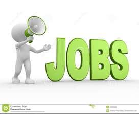 Loan Process executive - PAI Showroom - JP Nagar