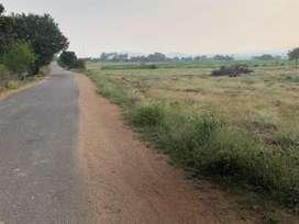 Agriculture land for sale for ventures near Ibrahimpatnam  Nallavelli