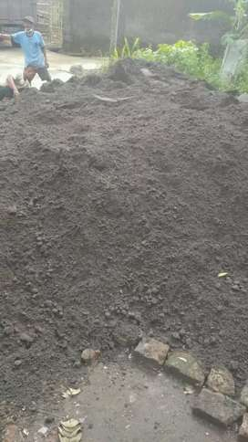 Sedia pasir merapi