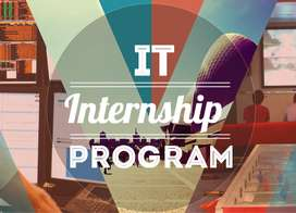 Online IT Internship Leading to well paid job
