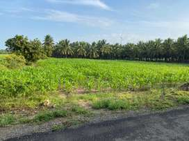 One acre agriculture land for sale in Gudimangalam area