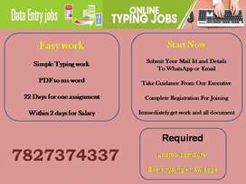 Suitable Job for gentleman. PDF TO MS WORD. Only Typing is there.