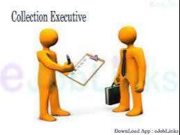 collection // verification// courier //  filed  executive job
