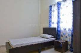 Girls hostel - 3 times homely food