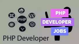 Sure Placement for Back Office,PHP Devlpr, Web Designer in BBSR.