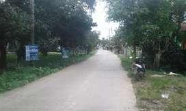 Tanah kosong shm