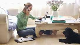 Work from home anytime