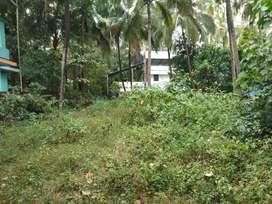 45 Lacs 15 cent plot Velapaya