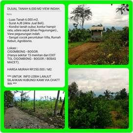 Dijual Tanah Kebun Jeruk dengan View Sangat Indah, Luas 6024m2