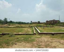 All plot in Angul town