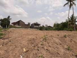 Tanah Paling Murah Dekat UMY Kasihan