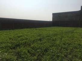 Industrial Land For Factory or Cattle Farm For Sale
