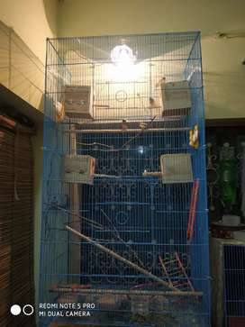 Cage for birrds