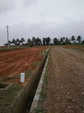 Beautiful residential villa plot at attibele for 13lakhs