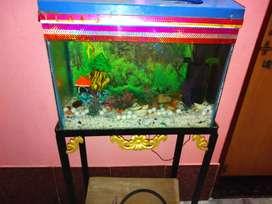 Aquarium in jamshedpur