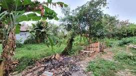 Dijual Cepat Lahan Tanah di Cibungur Karawang