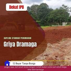 Cluster Area Dramaga, Dekat Giant Dramaga
