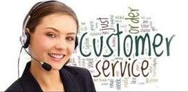 Required Domestic Hindi Bpo Call Center Inbound Voice Process`
