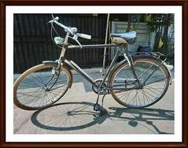 Sepeda Gazelle Langka Type Sport