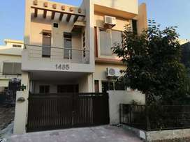 House for Rent in Bahria Town phase 8 Rawalpindi Islamabad