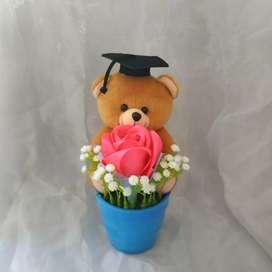 Mini pot Teddy Bear wisuda
