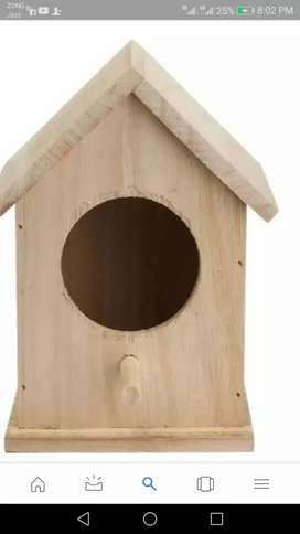 Parrot box for sell cargo available