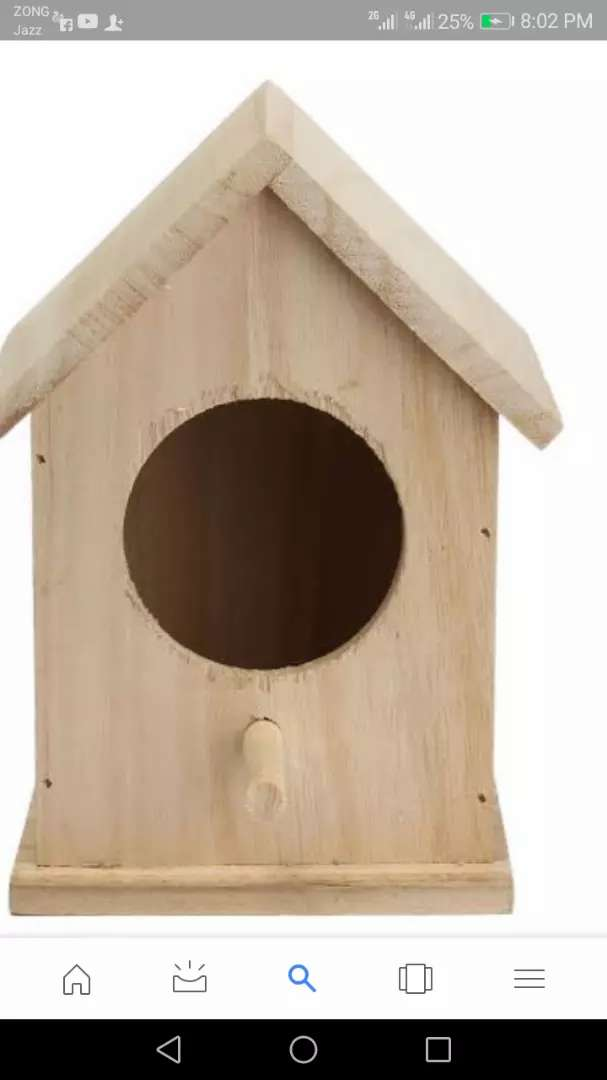 Parrot box for sell cargo available 0