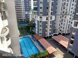 Brand laxury flat rent at kaloor rent 17000plus mmc