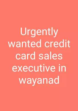 Urgently wanted credit card sales executive in wayanad