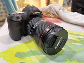 Canon EOS 5D Mark IV  with 24 - 105 mm lens  Age 1 yr  8 months