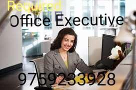 Office Executive Female