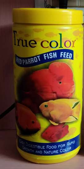 True colors parrot fish food for sale 700 only