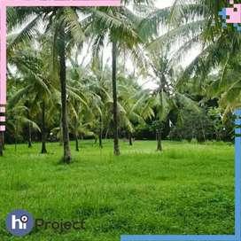 1,2 Hektar Tanah kebun di Lembar Lombok barat T386