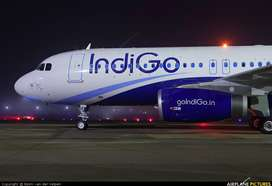 New hiring for INDIGO airlines  Walk in interviews - Contact for inter