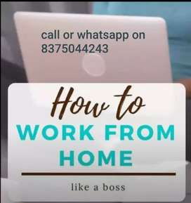 Copy paste home based job