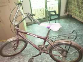 Forza cycle for sale