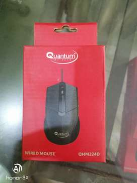Quantum mouse only on 140 rs