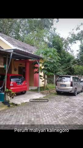 Take over / jual cas