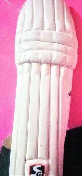 Sg batting pads for youth