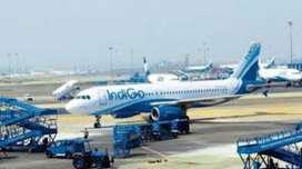 Airlines - Airport Job - Ground Staff - Cabin Crew Job