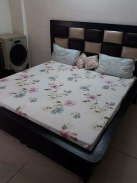 BEAUTIFUL FIRST FLOOR 2BHK FOR DECENT  WORKING FAMILY