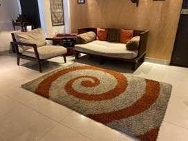Carpet for Modern Living room