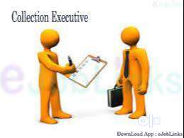 filed executive  jobs(  document collection // verification)