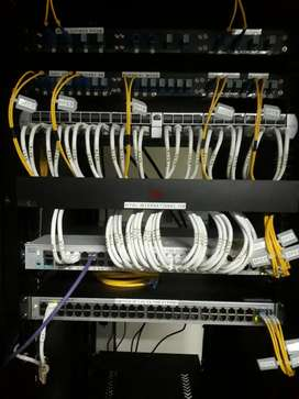 Network Administrator  & IT Services