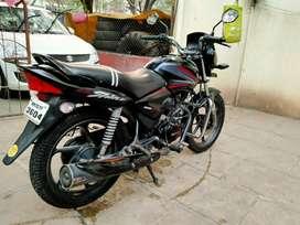 Honda Shine black colour, self disc brake.button tyre new battery