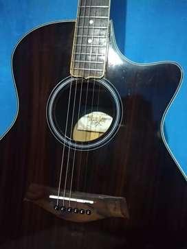 Guitar taylor pabrikan