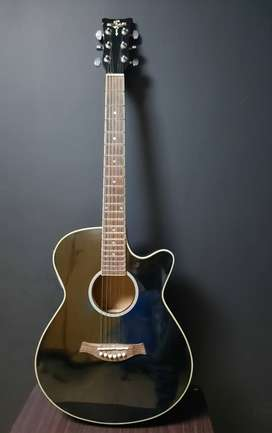 Semi Acoustic Guitar (Brand: Michael)