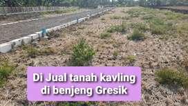 Tanah kavling nol jalan poros desa maju