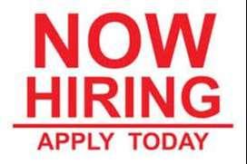 Urgent hiring for field  address verification executives