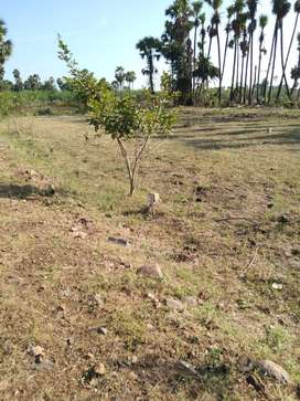 Basic price with high priortity with 50% discuont plots at kanchikache